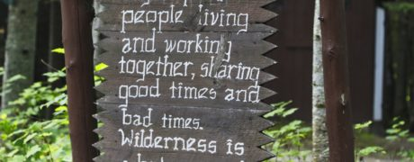 Return To Wilderness