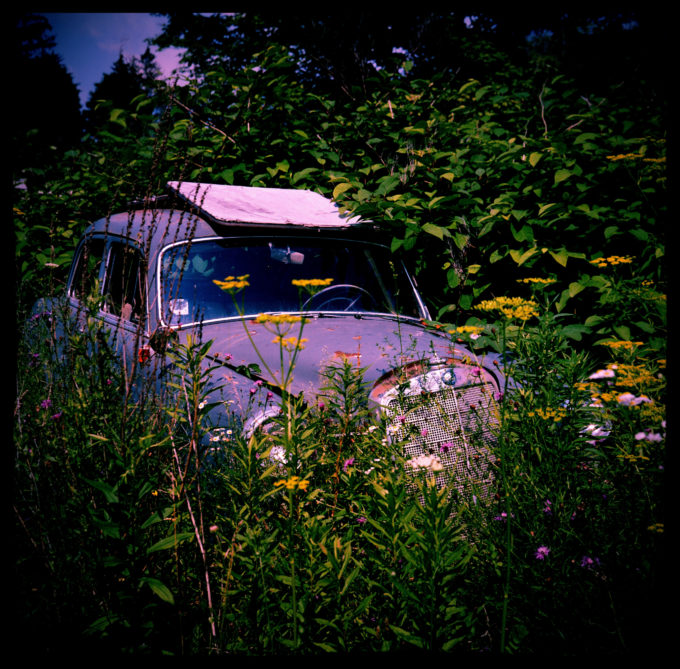 Abandoned Car In Tall Grass