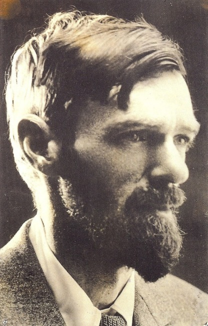 pornography by d h lawrence article Chatterley on trial by d h lawrence macmillan, 432 pages it did not make pornography any less nasty and damaging to those who were its victims.