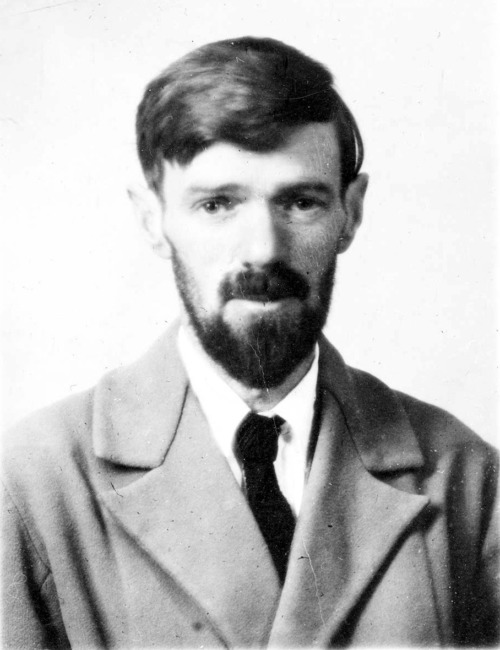 D.H. Lawrence Quote