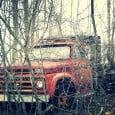 Forgotten-Chevrolet-In-The-Woods
