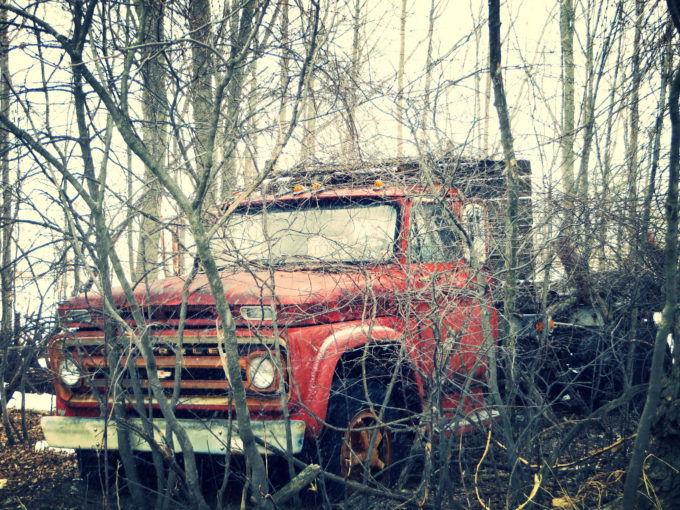 Forgotten Chevrolet In The Woods