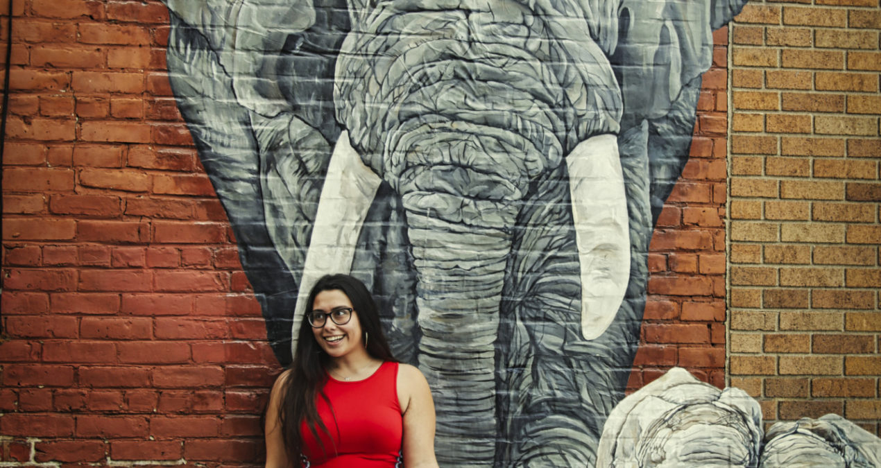 Makayla And The Elephant Mural