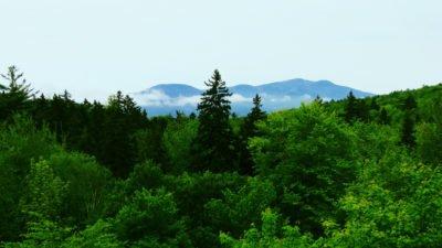 Mountain-Cry