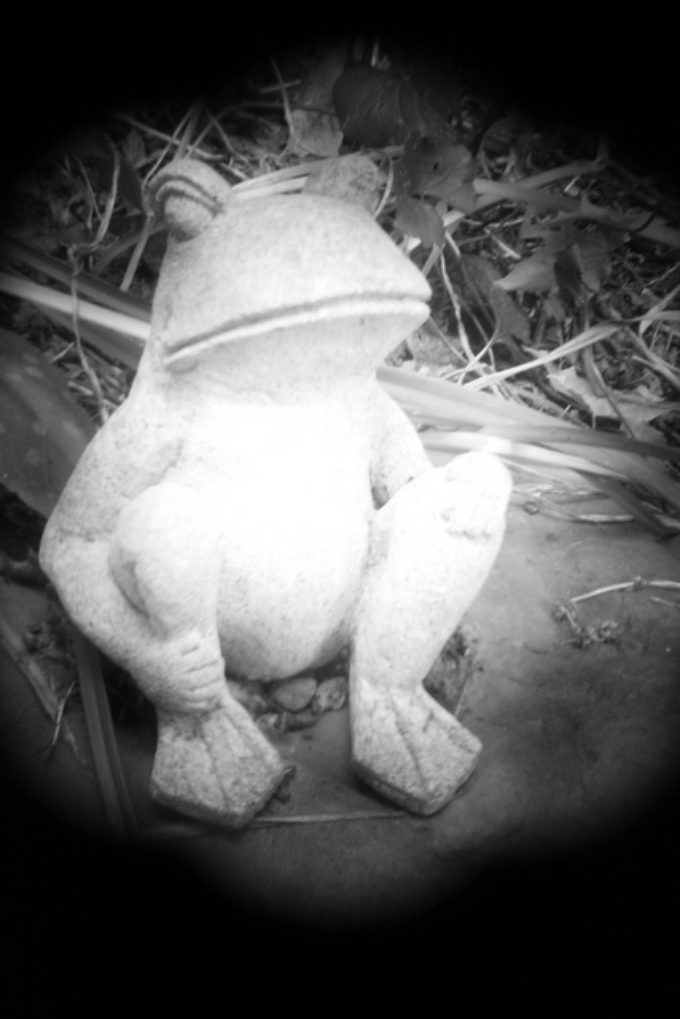 Old Frog Statue