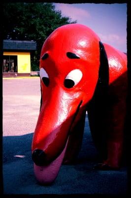 South Of The Border Hot Dog (Edit)