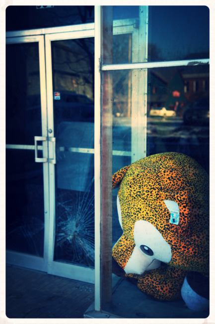 Teddy Bear In The Window (Edit)