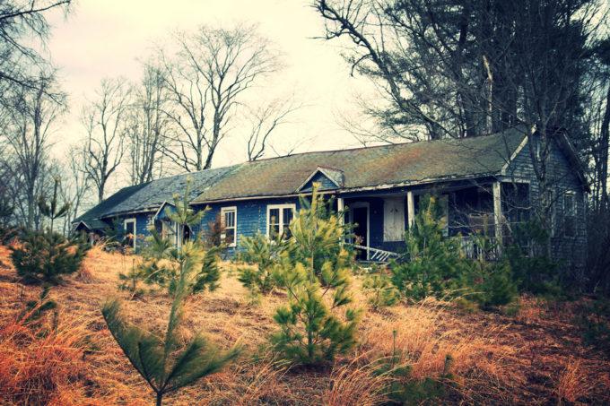 The Tamorack Lodge