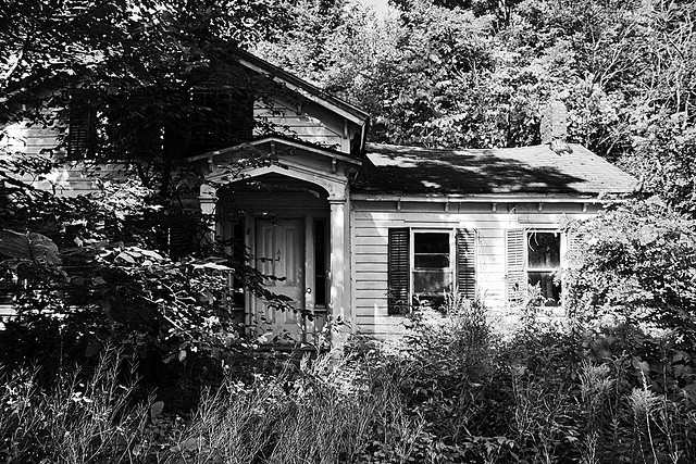 Abandoned House Swallowed By Overgrowth