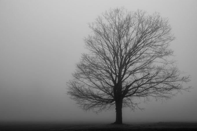 Alone In A Heavy Fog