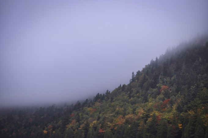 Mountainside Fog