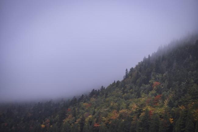 Mountainside Fog