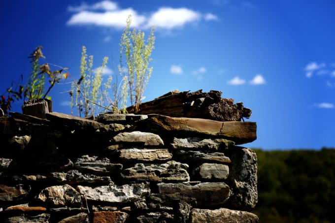 Of Wood And Stone
