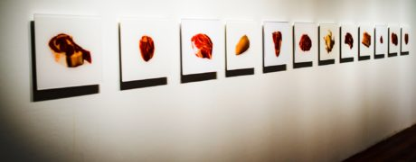 Photographs Of Meat