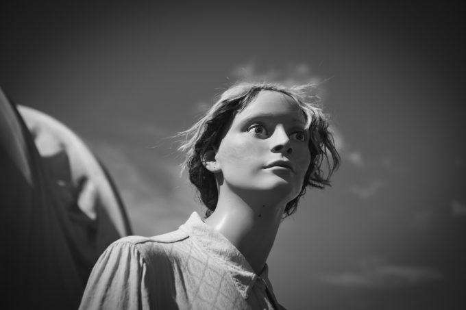 Pioneer Lady
