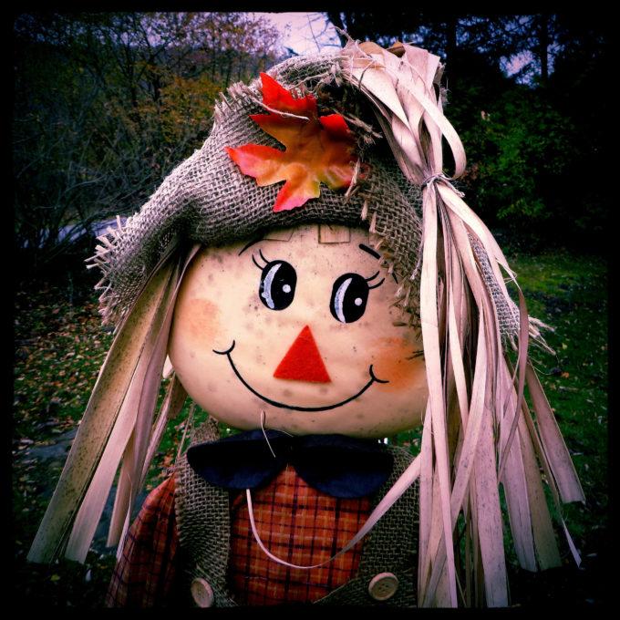 Storebought Scarecrow