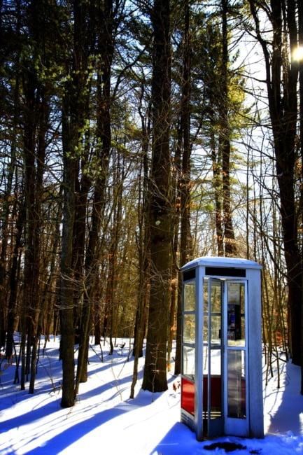 Wilderness Calls